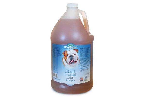 Bio-Groom-Natural Oatmeal Anti Itch-Dog and Cat Shampoo