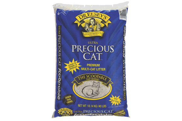 Top 10 Healthy Dry Cat Foods Best Quality Products