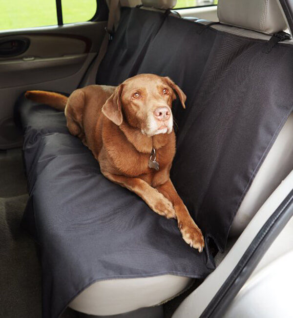 Best 10 Selected Car Seat Protection Covers For Dogs