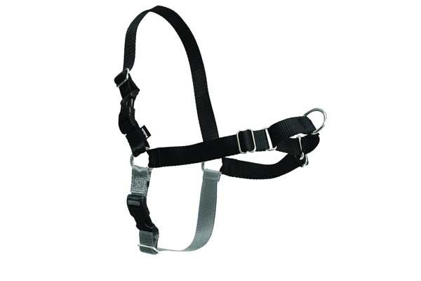 PetSafe Petite Easy-Walk Harness