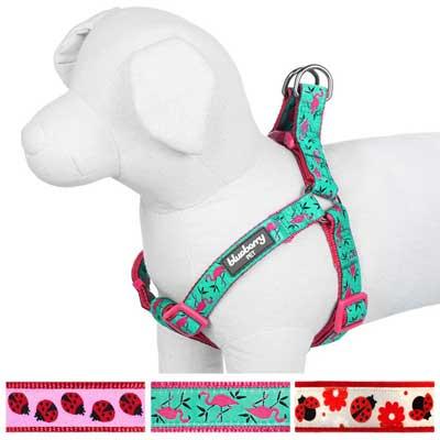 Blueberry Pet Step-in Adjustable Dog Harness