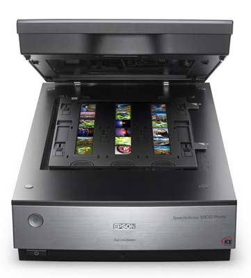 Epson V800 Perfection Photo and Film Scanner