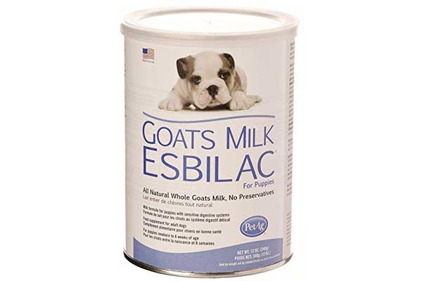 Puppy goats milk
