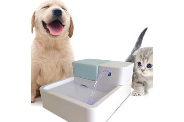 Uniclife Electric Drinking Bowl