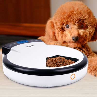GemPet Petwant Automatic Pet Feeder
