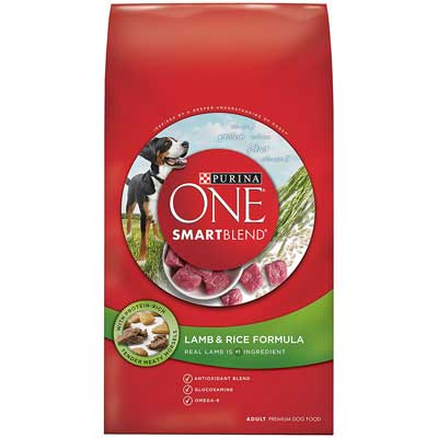 Purina ONE SmartBlend Dry Dog