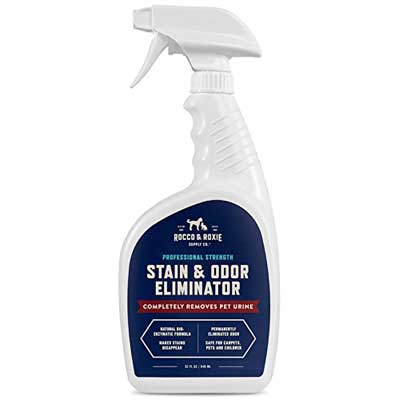 Professional Strength Stain & Odor Eliminator