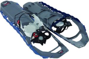 best frozen snowshoe