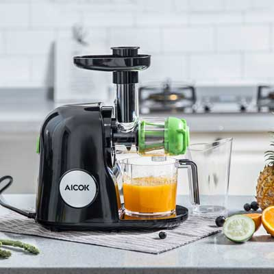 Argus Le Slow Masticating Juicer Review : Top 10 Best Juicers in 2018 Reviews