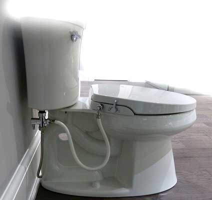 Enjoyable Top 10 Best Bidet Toilet Seat In 2019 Reviews Pdpeps Interior Chair Design Pdpepsorg
