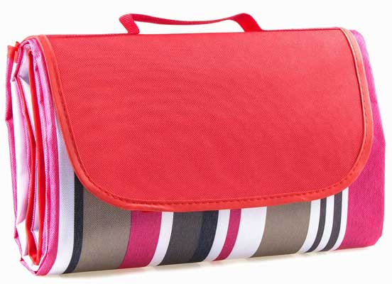 Family Picnic Blanket with Tote