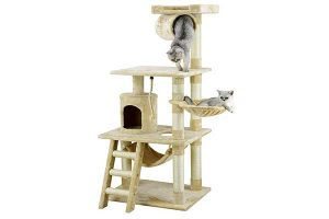 best cat trees reviews