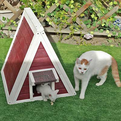 Petsfit Outdoor/Indoor Cat Shelter Feral Cat