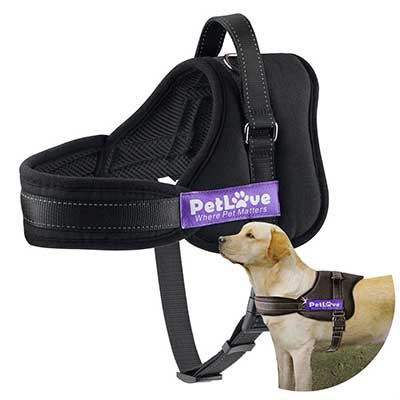 PetLove Dog Harness