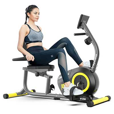 pooboo Magnetic Recumbent Bike Exercise Bike