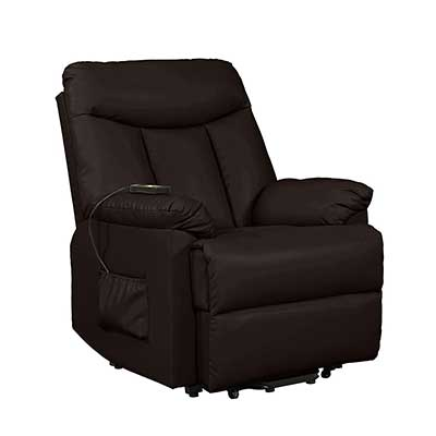 Domesis Renu Leather Wall Hugger Power Lift Chair