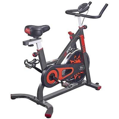 VIGBODY Exercise Bike Indoor Cycling Bicycle Stationary Bike