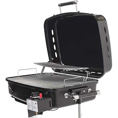 Flame King RV or Trailer Mounted BBQ