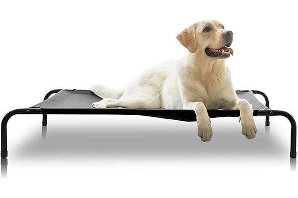ANWA Elevated Dog Cot Bed, Outdoor Dog Bed