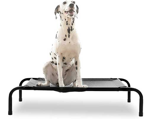 HACHIKITTY Elevated Dog Bed Outdoor Dog Cot
