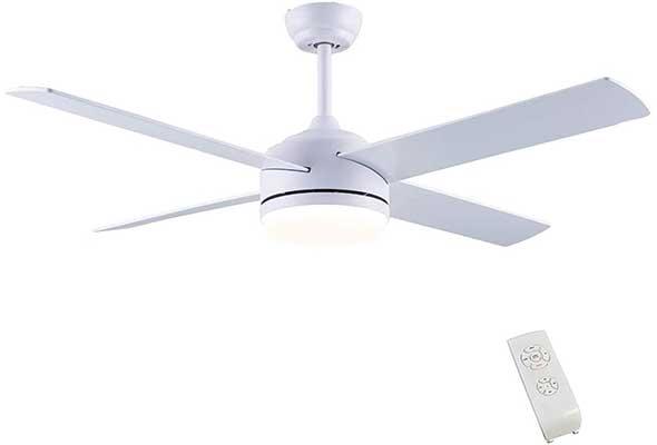 CJOY Ceiling Fan with Light