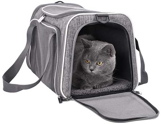 Petisfam Pet Carrier for Medium Cats &Small Dogs
