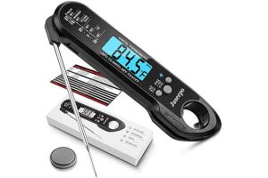 Best Meat Thermometers Reviews